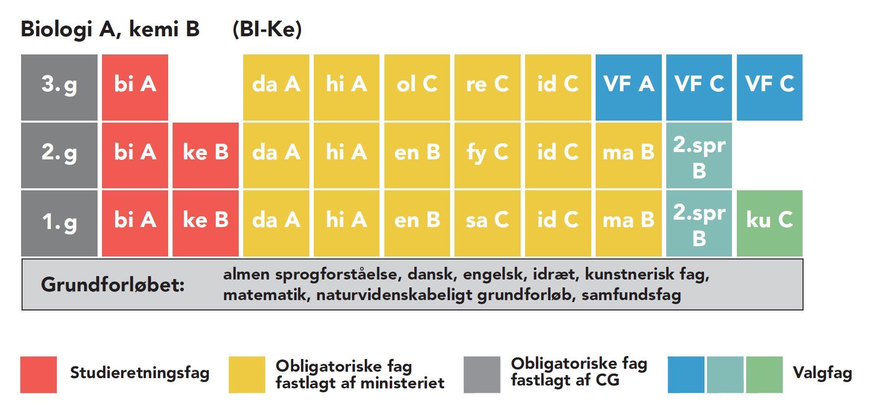 Studieretningen Biologi-Kemi