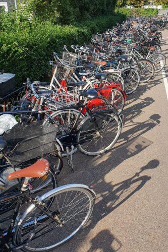 Cykelpølse